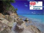 SPEC - AAA of Tidewater