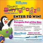 MH-MSQ Penguin Palooza