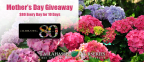 Tallahassee Nurseries Mother's Day Giveaway