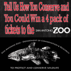 SA Zoo 4 pack/ Conservation 2018