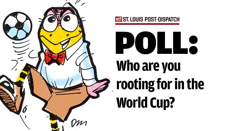 Take our World Cup poll