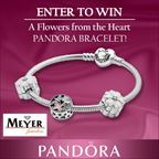 Pandora Flowers from the Heart Bracelet Gift Set Giveaway