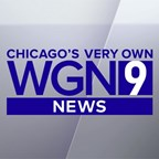 Which WGN Morning News Personality Are You?