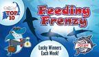 CapeCodOnline.com Top Ten Feeding Frenzy