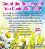 Spring Into Summer Daisy Search