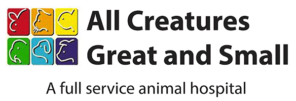 All Creatures Great and Small Pet Care Trivia Quiz