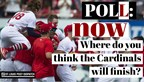 St. Louis Post-Dispatch poll: NOW where do you think the Cardinals will finish?
