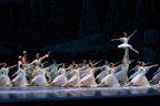 Manassas Ballet Ticket Giveaway 11/2018