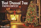 Best Dressed Tree