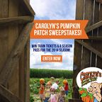 Carolyn's Pumpkin Patch Sweepstakes