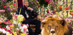 Win A Digital Copy Of DJ Khaled's MAJOR KEY Album