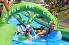 Slide the City Celebrate Holyoke 2016