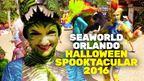 SeaWorld Spooktacular 2016
