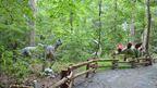 Virginia Living Museum - Dinosaur Discovery Trail