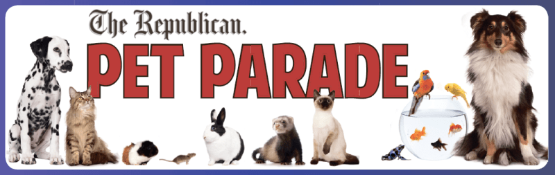 March Pet Parade