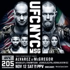 UFC 162: Silva vs. Weidman on DVD
