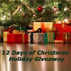 12 Days of Christmas - Business Showcase