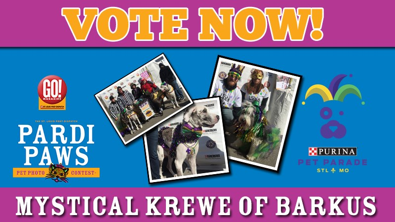 Purina presents Post-Dispatch Pardi Paws Photo Contest Mystical Krewe of Barkus