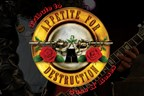 Guns and Roses Tribute Band Tickets - Web contest