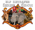 Saginaw Shrine Circus Giveaway!