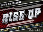 Falcons Spirit