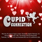 2015 Cupid Connection