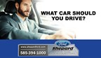 What Car Should You Drive brought to you by Shepar