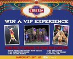 VIP Experience at the George Carden Circus