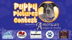 Puppy Pictures Contest
