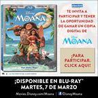 ENH-Moana Digital Copy Giveaway
