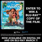 MH-Moana DVD Giveaway Contest