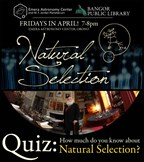 Emera Quiz: How much do you know about Natural Selection?