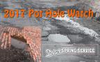 Dias Spring Service Pot Hole Watch