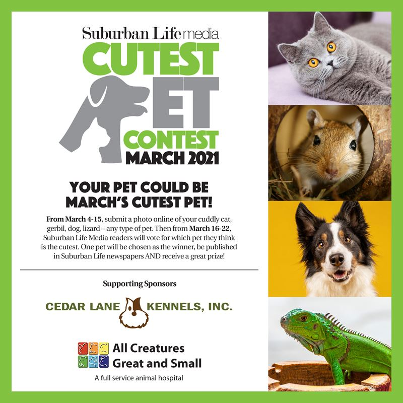 Suburban Life Media's Cutest Pet Contest March 2021
