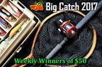 Big Catch Contest 2017