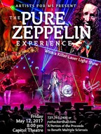 The Pure Zeppelin Experience