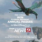 WFTV 2017 Disney's Pandora Sweepstakes
