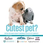 Kane County Chronicle's Cutest Pet Contest 2017