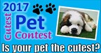 Cutest Pet Contest 2017
