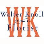 WKF $100 gift certificate