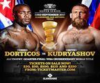 World Boxing 2017
