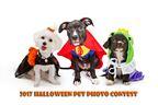 Halloween Pet Photo Contest 2017