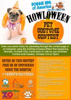 Howloween Pet Costume Contest 2017