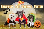 Pet Halloween Costume Contest 10/23 - 11/5
