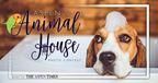 Aspens Animal House 2018