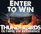 Thunderbirds VIP Experience