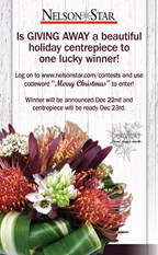 Christmas Centrepiece GIVE AWAY!