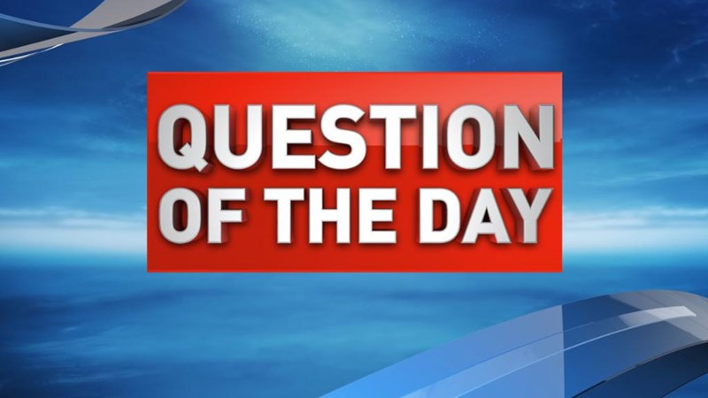 Question of the Day Test