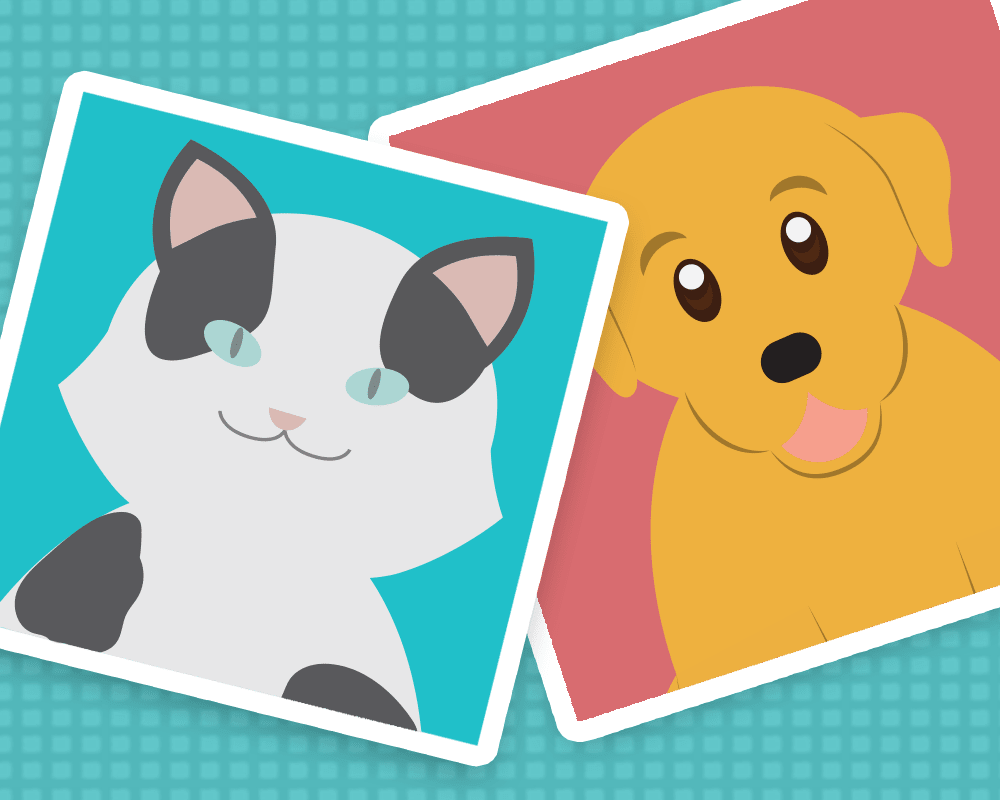 Image for QUIZ: Can We Guess What Kind Of Pet You Own?