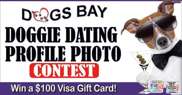 doggy dating profilOrlando Florida Dating Sites